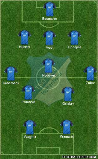 TSG 1899 Hoffenheim 4-1-4-1 football formation